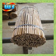 bambu usato nel sostenere centaurea