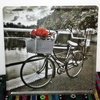 TP-686 Bicycle Red Rose 3D Printing Hanging Metal Wall Art Decor