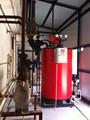 De salida de vapor 0.5t/hr de combustible de aceite/de gas de la caldera de vapor utilizado en los alimentos de la industria de maquinaria producir alimentos de origen animal de perro o gato de pescado de alimentos