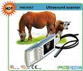 fn610v caliente venta ce aprobó digital de ultrasonido equina