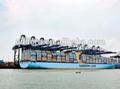 Competitve e frete marítimo profissional/serviço de transporte da china para reykjavik( islândia)