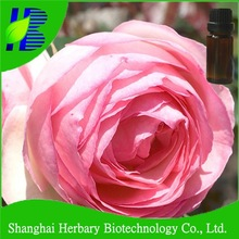 GMP manufacturer supply rose essential oil