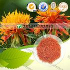 Zhejiang Top Grade Saffron
