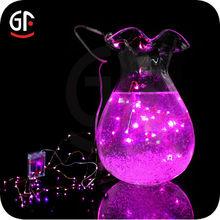 2014 Best Selling Wedding Decoration Grape Light String And Decorative Light