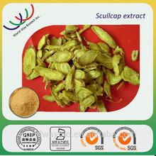 Functional cosmetic raw material natural herb 90% baicalin radix scutellariae baicalensis extract
