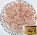170 g conservas de atum peixe em salmoura