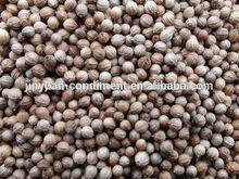 Top Quality Black Coriander Seeds Price