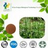 Cimicifuga Racemosa extract Triterpene glycosides2.5%