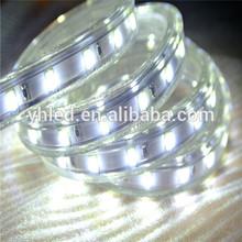 Stars shining high voltage led SMD5050/5630 common cathode rgb led strip