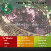 Grape Seed Extract Powder/Grape Sugar Powder/Powdered Grape Juice