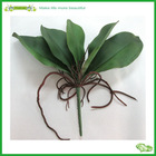 Promotion China real touch flower artificial leaf Wholesalers