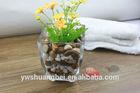 cheap wholesale clear square glass tank decorative