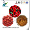 new harvest stock natural goji berry extract ISO&HACCP factory