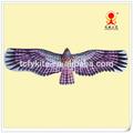 النسر الورقية اليابانية، الطيور الطائرة الورقية، النسر الورقية التقليدية