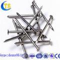 Venta caliente común clavos/común clavo de hierro/las uñas cable común