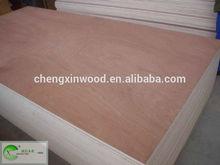 Shandong China 18mm plywood professional rate