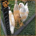 A reprodução Animal galvanizado e pvc revestido hexagonal wire mesh