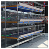H type poultry equipment broiler chicken breeding cage