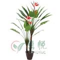 Caliente de interior 2014 plantas de palma( 0317- yy032- 24- 2)