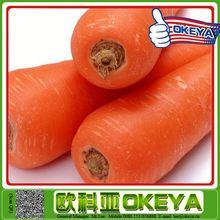 2014 wholesale newest arrival import fresh carrots