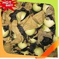 Mới đến ngọt ngon hoa quả kiwi trung quốc