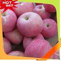 nova chegada delicioso doce nome de frutas maçã verde