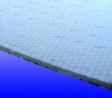 PE Conveyor Belting