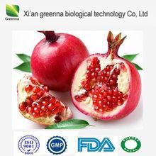 Pomegranate Extract/ Ellagic Acid/CAS No: 476-66-4