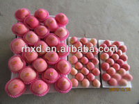 2014 new harvest sweet fresh fuji apple on hot sale