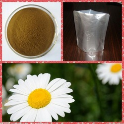 supply 100% natural 5:1 10:1 brown bellis perennis extract