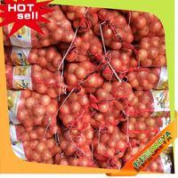 New arrival wholesale decoration plastic onions