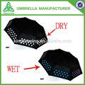 cambio de color de paraguas
