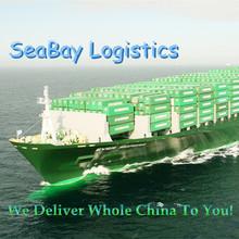 Best door to door delivery service from China to Puerto San Antonio, Chile