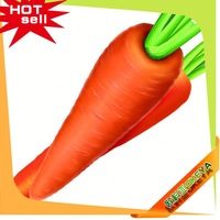 2014 Wholesale Latest indian vegetable names