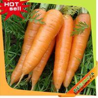 2014 Wholesale Latest vegetable juice