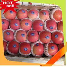 Professional Fruit Supplier natural fruit flavors 2014
