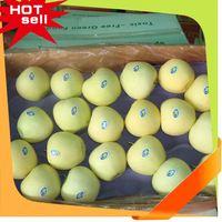 Professional Fruit Supplier hybrid fruit trees 2014