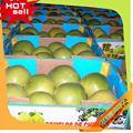 profissional fornecedor de frutas nome de frutas maçã verde 2014