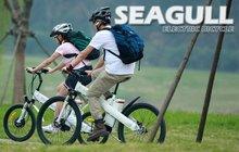 1000w electric dirt bike Sport electric bike with 250W brushless gear hub motor