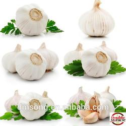 Chinese natural normal white dry garlic exporter
