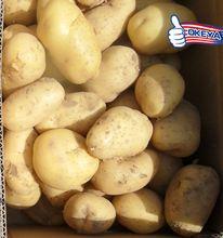 NEW CROP!!! Cheap Prices pringles potatoes 2014 wholesale