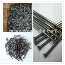 Wooden Iron Nails Lowest Factory Price