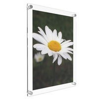 promotional wall mounted glass acrylic picture frame with nails for decorating