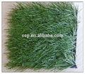 ชิงเต่าcspผู้ผลิตหญ้าmonofilamentหญ้าสังเคราะห์สำหรับฟุตบอล/หญ้าสนามหญ้าเทียมสำหรับสนามเทนนิส