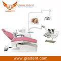 unidad dental nueva dental diseño de resina de acrílico