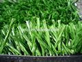 Csp qingdao fabricación precio barato de césped sintético/de hierba artificial para el campo de fútbol