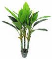 plantas artificiais plantas de pistache
