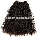 curly tecer cabelo africano americanos com o estilo de cabelo curto