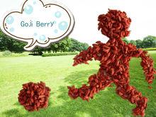 250 grams retail packed Goji Berries