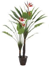 180cm height china export paradise birds tree(0317)